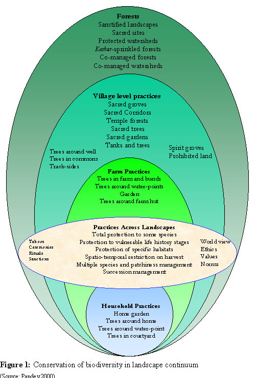 Traditional Knowledge Systems For Biodiversity Conservation